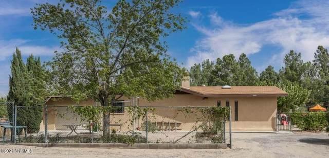 6020 Ledesma Drive, Dona Ana, NM 88032 (MLS #2103237) :: Better Homes and Gardens Real Estate - Steinborn & Associates