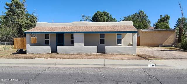 1238 N Mesquite Street, Las Cruces, NM 88001 (MLS #2103239) :: Better Homes and Gardens Real Estate - Steinborn & Associates