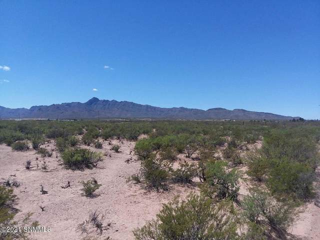 0000 County Road A-074, Chaparral, NM 88081 (MLS #2103252) :: Better Homes and Gardens Real Estate - Steinborn & Associates