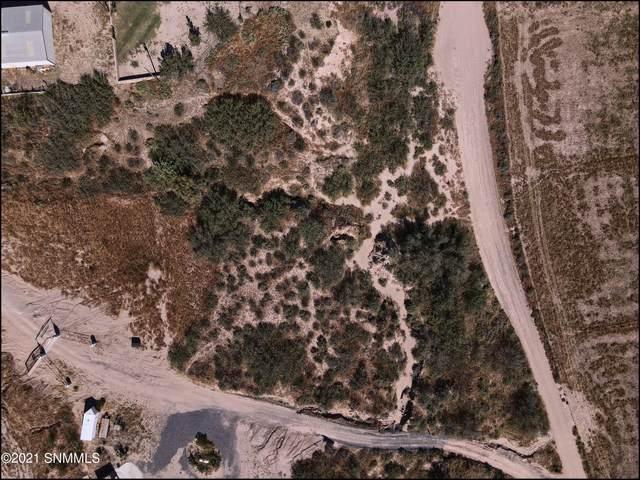 1185 S Alvarez, Anthony, NM 88021 (MLS #2103264) :: Better Homes and Gardens Real Estate - Steinborn & Associates