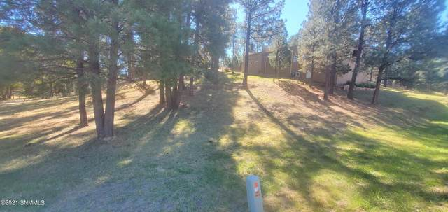 502 Hull Road, Ruidoso, NM 88345 (MLS #2103272) :: Better Homes and Gardens Real Estate - Steinborn & Associates