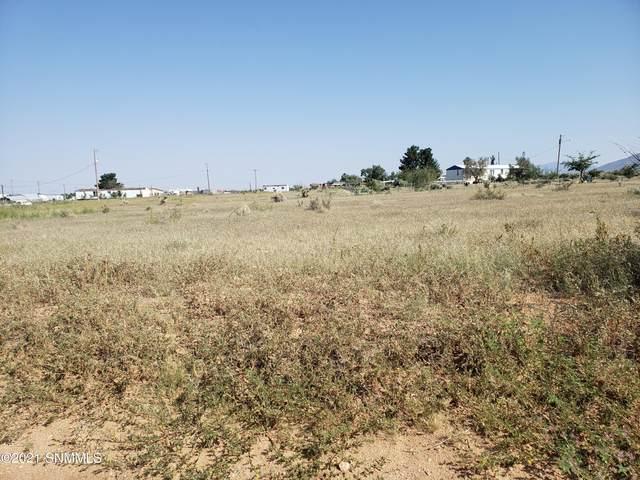 000 Luna Vista, Las Cruces, NM 88012 (MLS #2103283) :: Better Homes and Gardens Real Estate - Steinborn & Associates