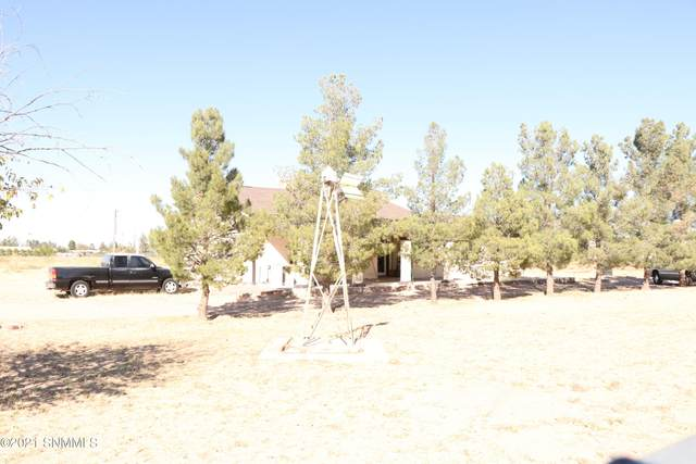 840 David Michael Drive, Chaparral, NM 88081 (MLS #2103284) :: Better Homes and Gardens Real Estate - Steinborn & Associates