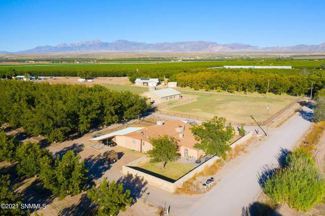 696 Sayles Road, La Mesa, NM 88044 (MLS #2103290) :: Better Homes and Gardens Real Estate - Steinborn & Associates