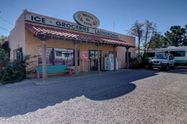 1551 Avenida De Mesilla, Las Cruces, NM 88005 (MLS #2103295) :: Better Homes and Gardens Real Estate - Steinborn & Associates