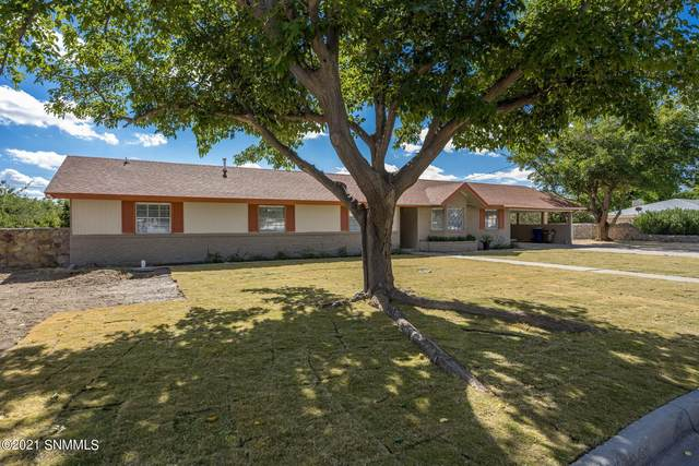 1080 Rainbow Drive, Las Cruces, NM 88005 (MLS #2103307) :: Better Homes and Gardens Real Estate - Steinborn & Associates