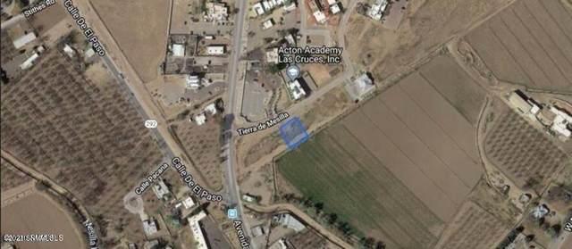 0000 Tierra De Mesilla, Mesilla, NM 88046 (MLS #2103308) :: Better Homes and Gardens Real Estate - Steinborn & Associates