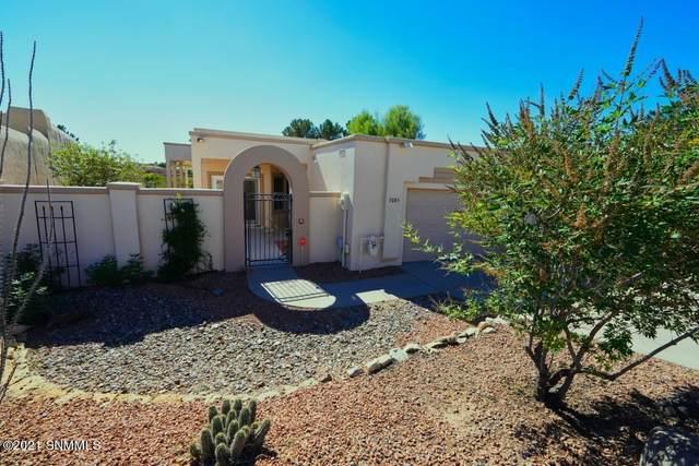 7085 Camino Nuevo Mejico, Las Cruces, NM 88007 (MLS #2103313) :: Las Cruces Real Estate Professionals