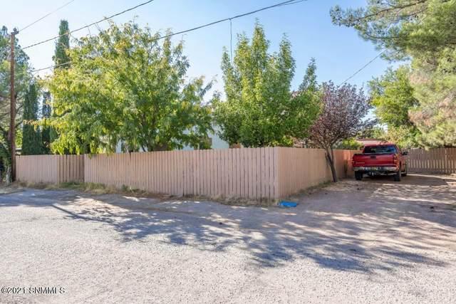2518 Calle De Santiago, Mesilla, NM 88046 (MLS #2103350) :: Better Homes and Gardens Real Estate - Steinborn & Associates