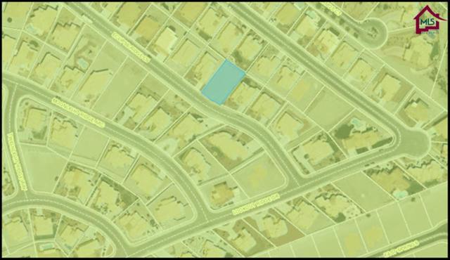 3095 Eclipse Ridge Lane, Las Cruces, NM 88007 (MLS #1401017) :: Steinborn & Associates Real Estate
