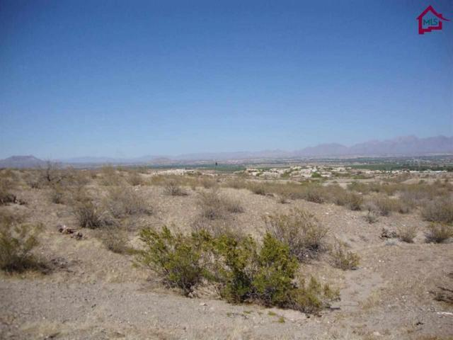 TBD Tbd Stone Gate Lane, Las Cruces, NM 88007 (MLS #1401268) :: Better Homes and Gardens Real Estate - Steinborn & Associates