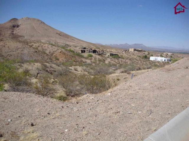 TBD Tbd Canyon View Lane, Las Cruces, NM 88007 (MLS #1401273) :: Better Homes and Gardens Real Estate - Steinborn & Associates