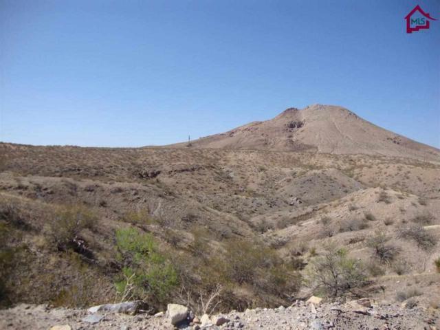TBD Tbd Canyon View Lane, Las Cruces, NM 88007 (MLS #1401276) :: Steinborn & Associates Real Estate