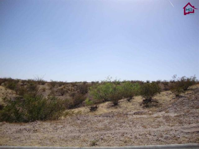 TBD Tbd Stone Gate Lane, Las Cruces, NM 88007 (MLS #1401279) :: Better Homes and Gardens Real Estate - Steinborn & Associates