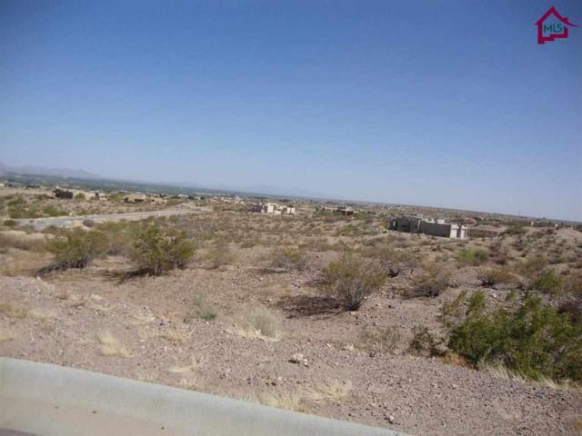 TBD Tbd Stone Ridge Court, Las Cruces, NM 88007 (MLS #1401289) :: Steinborn & Associates Real Estate