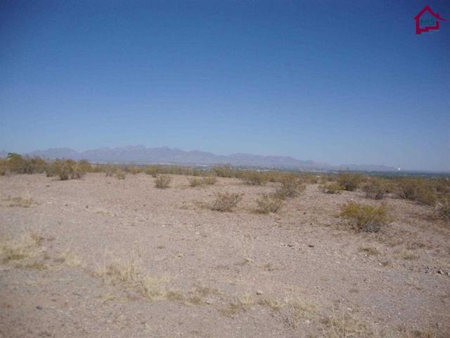 TBD Tbd Stone Ridge Court, Las Cruces, NM 88007 (MLS #1401290) :: Steinborn & Associates Real Estate