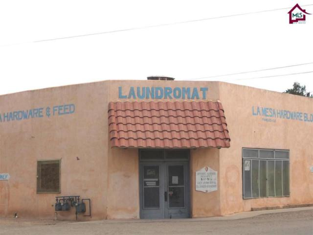221 Principal Street, La Mesa, NM 88044 (MLS #1401763) :: Steinborn & Associates Real Estate