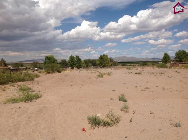 000 S Perea Road, Chamberino, NM 88027 (MLS #1402200) :: Steinborn & Associates Real Estate