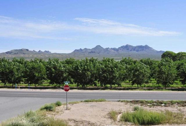 1505 Apache Canyon Court, Las Cruces, NM 88005 (MLS #1402761) :: Steinborn & Associates Real Estate