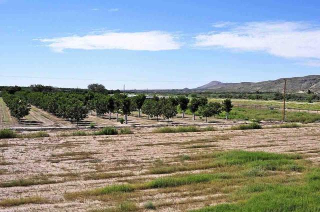 7870 Apache Canyon Drive, Las Cruces, NM 88005 (MLS #1402769) :: Steinborn & Associates Real Estate