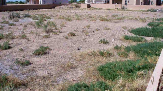3008 Corte De Diana, Deming, NM 88030 (MLS #1402920) :: Steinborn & Associates Real Estate