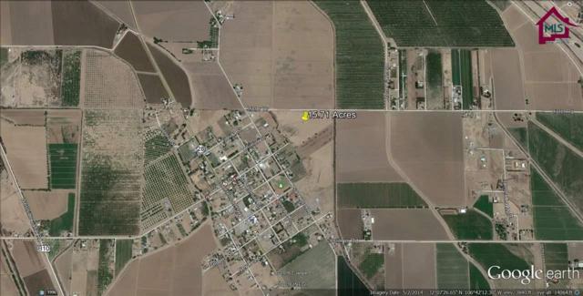 TBD Tbd Lister Drive, La Mesa, NM 88044 (MLS #1600448) :: Steinborn & Associates Real Estate