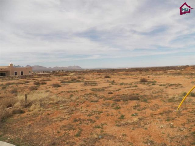0000 Gadwall Place, Las Cruces, NM 88012 (MLS #1600557) :: Steinborn & Associates Real Estate