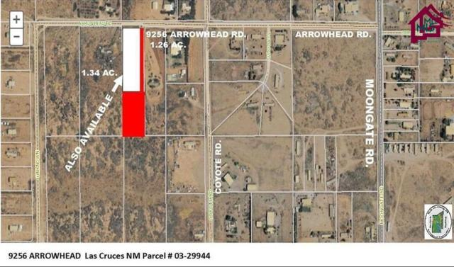 9256 Arrowhead Road, Las Cruces, NM 88012 (MLS #1600781) :: Steinborn & Associates Real Estate