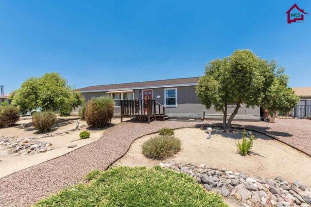 2964 Polder Lane, Las Cruces, NM 88007 (MLS #1601658) :: Steinborn & Associates Real Estate