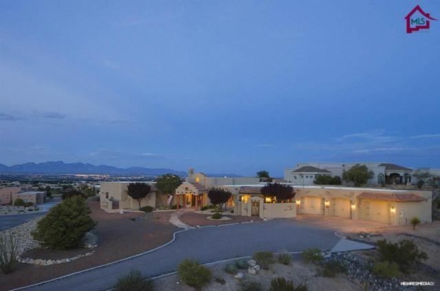 1229 Titania Court, Las Cruces, NM 88007 (MLS #1602114) :: Steinborn & Associates Real Estate