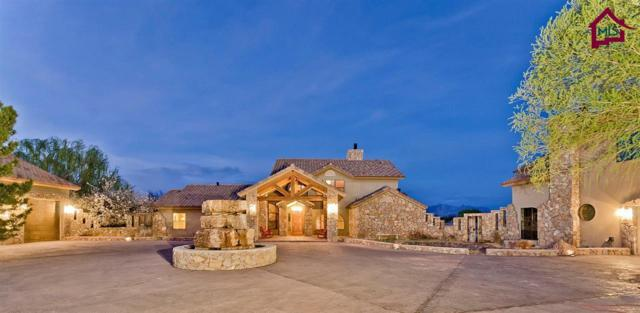 3851 Snow Road, Las Cruces, NM 88005 (MLS #1602416) :: Austin Tharp Team