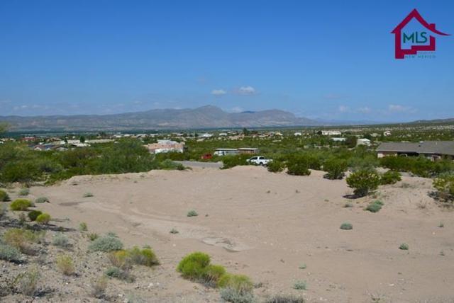 1900 Rincon De Amigos, Las Cruces, NM 88012 (MLS #1602419) :: Steinborn & Associates Real Estate
