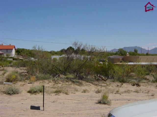 26A Chiricahua Trail, Las Cruces, NM 88012 (MLS #1602679) :: Steinborn & Associates Real Estate