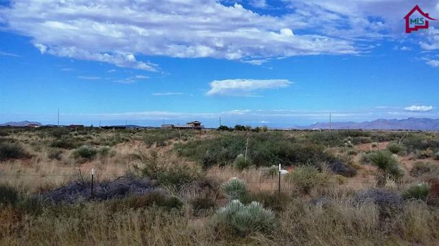 000 Highway 54, Chaparral, NM 88081 (MLS #1602955) :: Better Homes and Gardens Real Estate - Steinborn & Associates