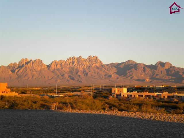 4363 Purple Sage Drive, Las Cruces, NM 88011 (MLS #1603164) :: Steinborn & Associates Real Estate