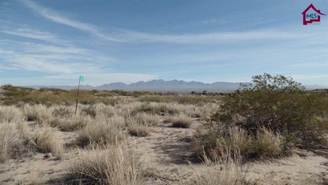 1300 Estancia Real Road, Las Cruces, NM 88007 (MLS #1603280) :: Steinborn & Associates Real Estate