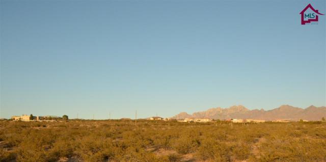 5495 J H Sharp Road, Las Cruces, NM 88005 (MLS #1603316) :: Steinborn & Associates Real Estate
