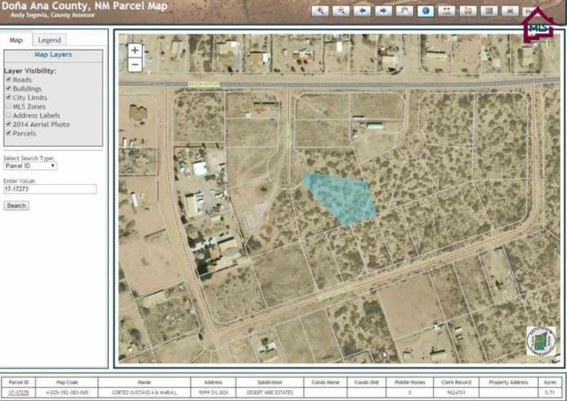 0000 Hidalgo Court, Chaparral, NM 88081 (MLS #1700007) :: Steinborn & Associates Real Estate