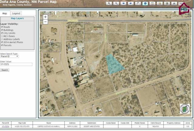 000 Hidalgo Court, Chaparral, NM 88081 (MLS #1700009) :: Steinborn & Associates Real Estate