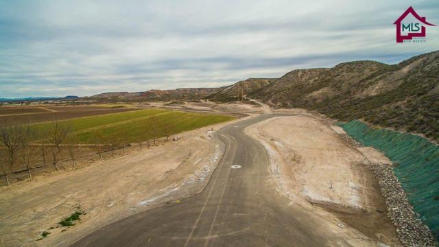 005c Spring Canyon Road, Hatch, NM 87937 (MLS #1700210) :: Steinborn & Associates Real Estate