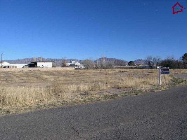 10 Calle Pequena, Anthony, NM 88021 (MLS #1700254) :: Steinborn & Associates Real Estate