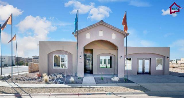 3720 Santa Minerva Avenue, Las Cruces, NM 88012 (MLS #1700262) :: Steinborn & Associates Real Estate