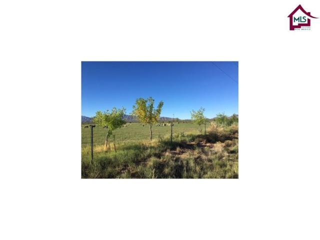985 Wicker Road, Chaparral, NM 88081 (MLS #1700286) :: Steinborn & Associates Real Estate