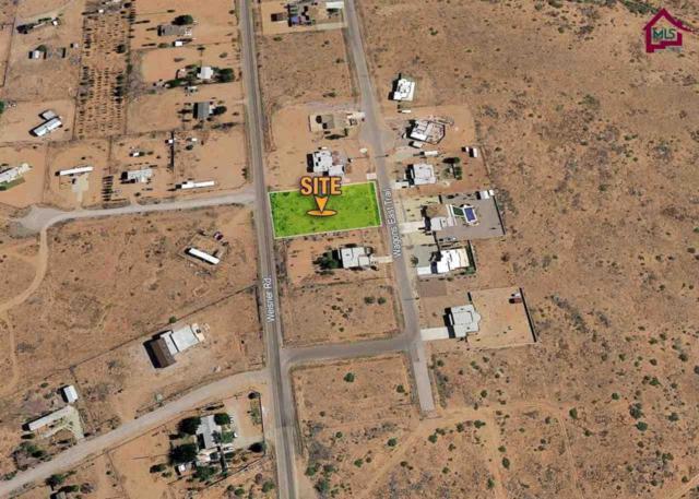 6327 Wagons Trail, Las Cruces, NM 88012 (MLS #1700410) :: Steinborn & Associates Real Estate