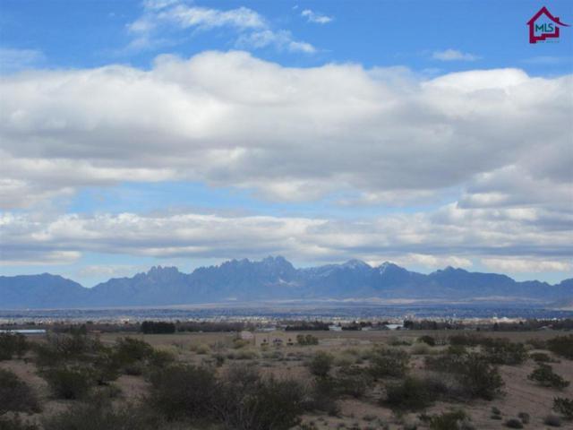 5600 Spanish Pointe Road, Las Cruces, NM 88007 (MLS #1700490) :: Steinborn & Associates Real Estate