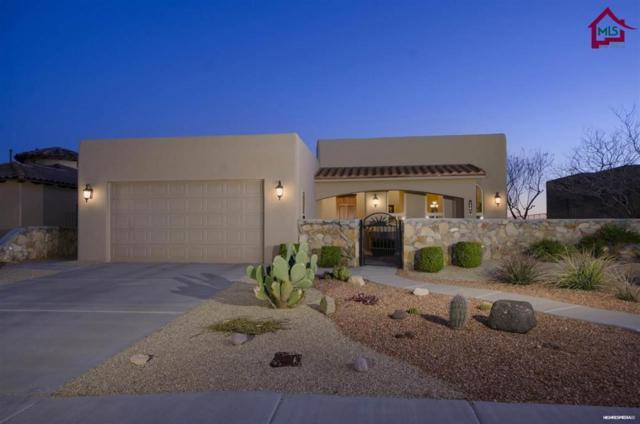 4443 Maricopa Circle, Las Cruces, NM 88011 (MLS #1700491) :: Steinborn & Associates Real Estate