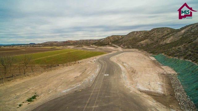 005f Spring Canyon Road, Hatch, NM 87937 (MLS #1700612) :: Steinborn & Associates Real Estate