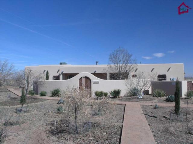 27745 San Diego Road, Columbus, NM 88029 (MLS #1700720) :: Steinborn & Associates Real Estate