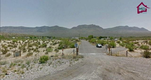 0000 Seco Creek Truth Road, Truth Or Consequences, NM 87901 (MLS #1701092) :: Steinborn & Associates Real Estate