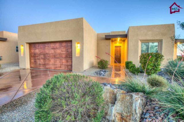3602 San Clemente, Las Cruces, NM 88012 (MLS #1701189) :: Steinborn & Associates Real Estate